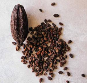Fèves de cacao et cabosse